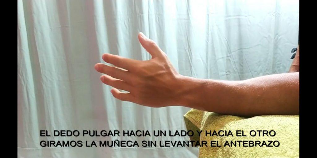 EJERCICIOS DE MUÑECA